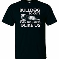 Bulldog So Cute Even The Haters Like Us Home