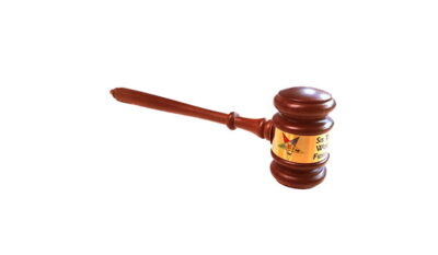 Eastern Star Gavel