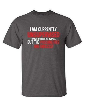 I Am Currently Unsupervised Funny T Shirt